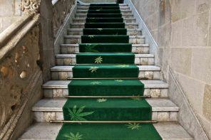 Hash Marihuana & Hemp Museum ovvero il Museo della Marihuana